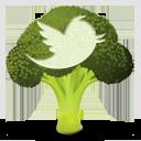 twitter-broccolli