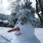 A Snowman in Winter